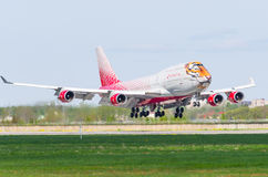 Flyg för Boeing 747 Rossiya flygbolagtiger, flygplats Pulkovo, Ryssland St Petersburg Maj 2017 Royaltyfria Foton