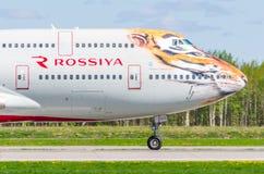 Flyg för Boeing 747 Rossiya flygbolagtiger, flygplats Pulkovo, Ryssland St Petersburg Maj 2017 Arkivfoton