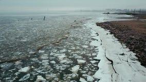 Flyg för flyg- sikt över den smältande isen av den finlandssvenska golfen i Ryssland arkivfilmer