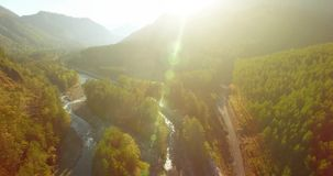 Flyg för mitt- luft över den ny bergfloden och äng på den soliga sommarmorgonen Lantlig grusväg under stock video