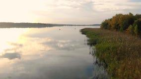 Flyg för flyg- sikt över den storartade höstflodbanken Intakt natur och sagalandskap lager videofilmer
