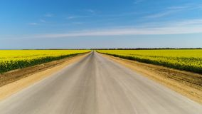 Flyg- f?r asfaltv?gen mellan gula f?lt p? bakgrund f?r bl? himmel skjutit Bed?va bygdlandskap med a stock video