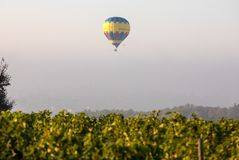 Flyg f?r luftballong i morgonen ?ver ving?rdarna n?ra Saint Emilion Gironde Frankrike arkivbild