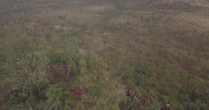 Flyg- flyga över och se ner på klippor i den australiska vildmarken arkivfilmer