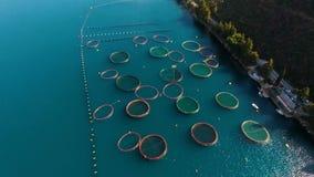 Flyg- fors av lantgården för växande skal, musslor och ostron lager videofilmer