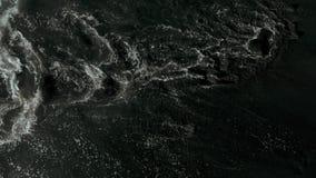 Flyg- fors f?r svart strand, Los Gigantes, Tenerife, kanarief?gel?ar, Spanien stock video