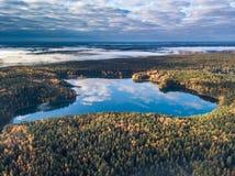 Flyg- höstsikt av sjön i Litauen royaltyfri bild