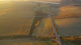 Flyg- jordbruks- landskap 4k från ett surr Kolonifält som är klart för skörd arkivfilmer