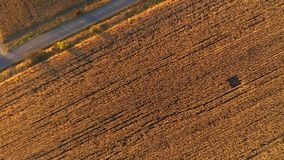 Flyg- jordbruks- landskap 4k från ett surr Kolonifält som är klart för skörd lager videofilmer
