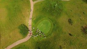 Flyg- längd i fot räknat av en härlig golfbana med golfaren som gör hans putt stock video