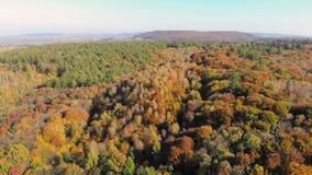 Flyg- längd i fot räknatsikt Kulöra höstträd Flyg över höstberg med skogar, ängar och kullar i den mjuka solnedgången stock video