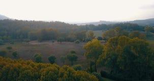 Flyg- flyg, låg höjd, över kullar och polofält på solnedgången Arkivfoto