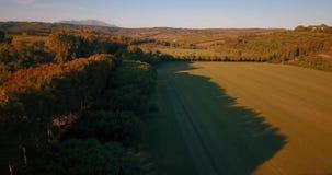 Flyg- flyg, låg höjd, över kullar och polofält på solnedgången arkivfilmer