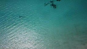 Flyg- landskap för fantastiskt surr av den charmiga stranden Es Trencs Mallorca spain arkivfilmer