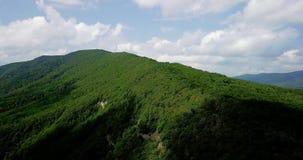 Flyg- landskapsikt av Kaukasus berg Forest Trees lager videofilmer