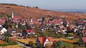 Flyg- panorama av höstRiquewihr vingårdar, Alsace, Frankrike arkivfilmer