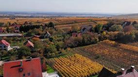 Flyg- panorama av höstRiquewihr vingårdar, Alsace, Frankrike lager videofilmer