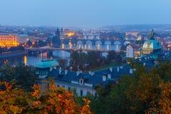 Flyg- sikt över ½en а för broar Ð den Vltava floden i Prague, Cz Fotografering för Bildbyråer