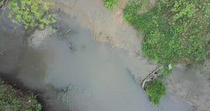 Flyg- sikt över en liten flod som lokaliseras i en ravin i skogen som går upp ovanför skogen arkivfilmer