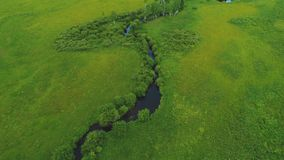 Flyg- sikt över naturen amazon 4k för sommar för gräsplan för land för härligt landskap för River Valley skogväg den fertila arkivfilmer