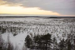 Flyg- sikt över skördfälten i vinter nära by Arkivfoton