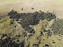 Flyg- sikt av ängen i Pyrenean, Frankrike royaltyfri fotografi