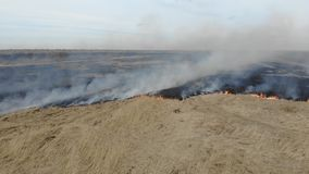 Flyg- sikt av att bränna torrt gräs i fältet, panna Katastrof och nöd- händelser, negativ inverkan på naturen stock video