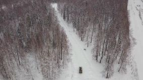 Flyg- sikt av behållaren som kör till och med behållaren för vinterskogstrid i skogbehållaren under snön arkivfilmer