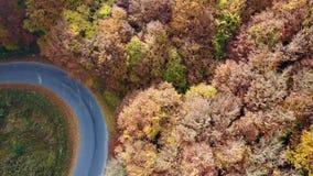Flyg- sikt av bergvägen och det härliga höstlandskapet arkivfilmer