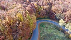 Flyg- sikt av bergvägen och det härliga höstlandskapet lager videofilmer