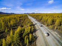 Flyg- sikt av bilk?rning till och med skogen p? landsv?gen Ryssland royaltyfri bild