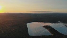 Flyg- sikt av blåa sjöar och gröna skogar på en solig dag i surrfotografi arkivfilmer