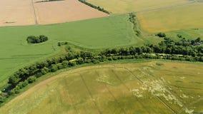 Flyg- sikt av bygdlandskapet med fält och vägen lager videofilmer