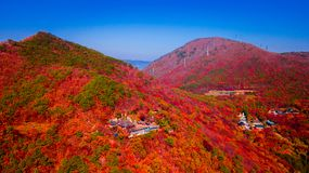 Flyg- sikt av den Beomeosa templet i den Busan Sydkorean Bilden består av templet som lokaliseras mellan berget som täckas med fä royaltyfria bilder