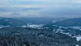 Flyg- sikt av den djupfrysta skogen och semesterorten med några moln på himlen lager videofilmer