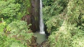 Flyg- sikt av den härliga vattenfallet i grön tropisk regnskog i Bali arkivfilmer