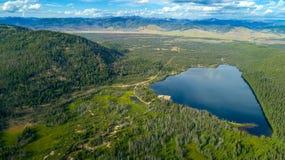 Flyg- sikt av den iconic Idaho Stanley sjön och gräsplanskogen Royaltyfri Fotografi