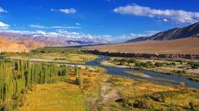 Flyg- sikt av den Leh staden, landskap av Ladakh, Jammu and Kashmir, Indien Arkivbilder