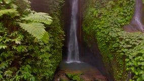 Flyg- sikt av den Leke Leke vattenfallet i djungler av Bali, Indonesien Surret flyttar sig långsamt till det vänstert lager videofilmer