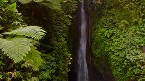 Flyg- sikt av den Leke Leke vattenfallet i djungler av Bali, Indonesien Surret flyttar sig tillbaka och kameralutanden ner arkivfilmer