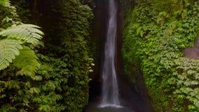 Flyg- sikt av den Leke Leke vattenfallet i djungler av Bali, Indonesien Surret flyttar upp raksträcka- och kameralutanden lager videofilmer