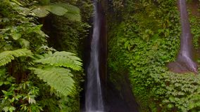 Flyg- sikt av den Leke Leke vattenfallet i djungler av Bali, Indonesien Surrflyttningar till det vänstert arkivfilmer