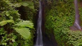 Flyg- sikt av den Leke Leke vattenfallet i djungler av Bali, Indonesien Surrflyttningar till rätten arkivfilmer