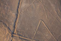 Flyg- sikt av den Nazca linjen, spindel, Peru Fotografering för Bildbyråer