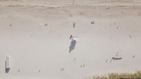 Flyg- sikt av den sandiga stranden strand miami lager videofilmer
