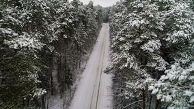 Flyg- sikt av den snöig skogen för vinter stock video