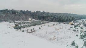 Flyg- sikt av den snöig skogen för vinter lager videofilmer