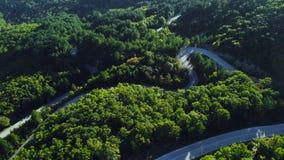 Flyg- sikt av den tjocka skogen i höst med vägklipp igenom arkivfilmer