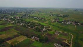Flyg- sikt av den vanliga ukrainska byn Sikt från ovannämnt av bygd i Ukraina Gamla hus, grönsakträdgårdar arkivfilmer