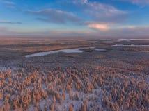 Flyg- sikt av den vintersnowscape och skogen Royaltyfri Foto